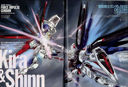 Gundam: Force Impulse Gundam vs Freedom Gundam